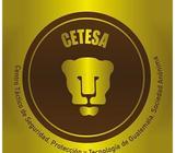 Servicios de Seguridad, Empresa CETESA Centro Táctico de Seguridad, Protección y Tecnología de Guate