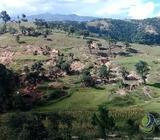 FINCA DE 20 MANZANAS EN VENTA EN HUEHUETENANGO | PVT0120818