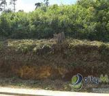 Vendo Terreno con 416.91m2 en San Pedro Sacatepequez PVT-013-09-12 PVT-013-09-12