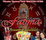 Lectura del Tarot Maestra Fatima