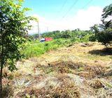 Km 67 Autopista Puerto Quetzal Vendo 20,654 Manzanas
